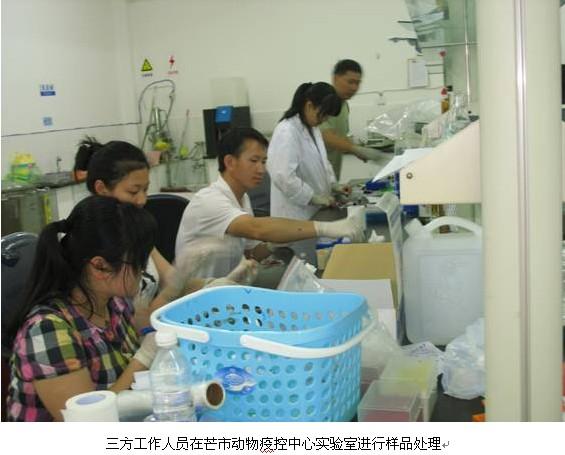 支持与反对动物实验